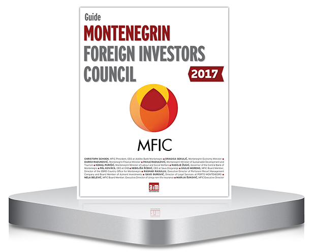 Montenegrin foreign investitors council